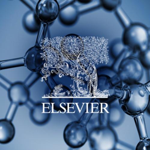 Elsevier Science Direct : E-commerce strategie en webshop voor de MKB- en SOHO-markten in publishing