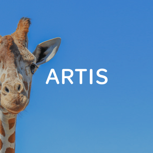 ARTIS - CRM and customer experience strategy